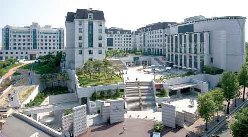 university_korea